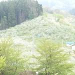 東奥義塾の校舎からの眺望