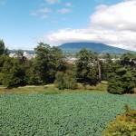 緑も深き〜岩木山