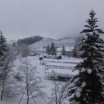 雪景色ご覧あれ