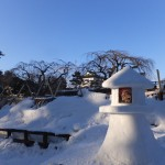 弘前雪灯篭祭りアラカルト