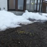 雪解け進む浪岡教会の今